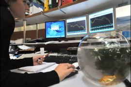 f/A goldfish swims in his jar as an employee of the Portzamparc's French stocks company watches the Cac 40 curves, on October 21, 2008 in Nantes. French stocks