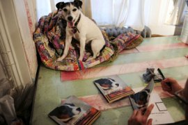 Sebastian Smith, Lifestyle-animal-art-offbeat Dog painting artist Tillamook Cheddar, or Tillie, a Jack Russell terrier, looks