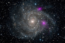 This new view of spiral galaxy IC 342, also known as Caldwell 5, obtained from NASA January 8, 2013 includes data from NASA's Nuclear Spectroscopic Telescope Array, or NuSTAR. High-energy X-ray data from NuSTAR have been translated to the color magenta, and superimposed on a visible-light view highlighting the galaxy and its star-studded arms. NuSTAR is the first orbiting telescope to take focused pictures of the cosmos in high-energy X-ray light; previous observations of this same galaxy taken at similar wavelengths blurred the entire object into one pixel. The two magenta spots are blazing black holes first detected at lower-energy X-ray wavelengths by NASA's Chandra X-ray Observatory. The black holes appear much brighter than typical stellar-mass black holes, such as those that pepper our own galaxy, yet they cannot be supermassive black holes or they would have sunk to the galaxy's center. Instead, they may be intermediate in mass, or there may be something else going on to explain their extremely energetic state. NuSTAR will help solve this puzzle.