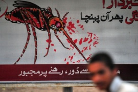 A Pakistani boy walks past the awareness advertisement against the deadly tropical disease dengue fever in Islamabad on September 30, 2011. In less than a month, 126 people have died and more than 12,000 have been diagnosed with the virus, which has spread rapidly among both rich and poor in Pakistan's cultural capital Lahore. Dengue affects between 50 and 100 million people in the tropics and subtropics each year, resulting in fever, muscle and joint ache.