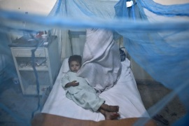 A Pakistani child suffering from the mosquito-borne disease, dengue fever, lies in a bed, next to his mother, covered with a net at an isolation ward of a hospital in Rawalpindi, Pakistan, Monday, Nov. 11, 2013. Dengue, a flu-like illness is spread by the Aedes mosquito and spikes during the annual monsoons, when the rains leave puddles of stagnant water where the insects breed. (AP Photo/Muhammed Muheisen)