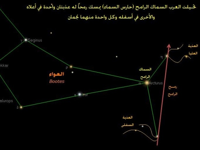 نجوم عربية تزخرف السماء