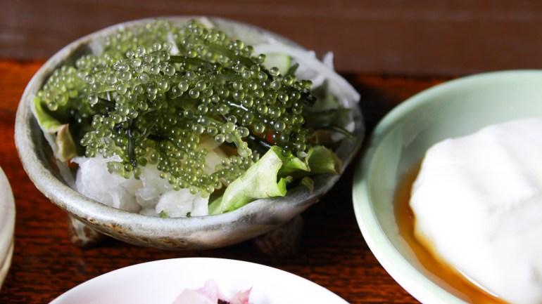 العادات الصحية لليابانيين انقاص الوزن نمط حياة صحي الأرز المعكرونة الكونجاك