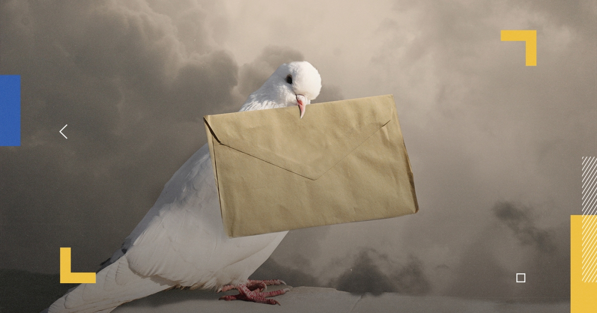 قصة الحمام الزاجل حملت رسائل سري للغاية و عاجل تحت جناحيها طوال قرون
