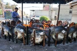 في مثل هذا اليوم 30/12/2006 الخامسة فجراً بتوقيت بغداد تم أعدام القائد صدام حسين 7878787