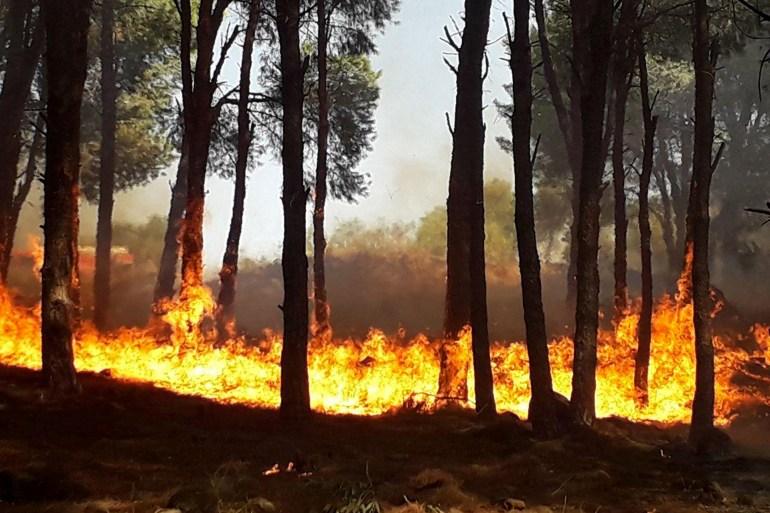 الحرائق التهمت عشرات القرى في الساحل السوري (الأوروبية)