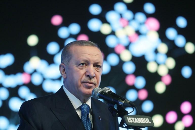 الرئيس التركي تعهد باتخاذ خطوات ضرورية في ظل الدستور لتحقيق الأمن والاستقرار (الأناضول)