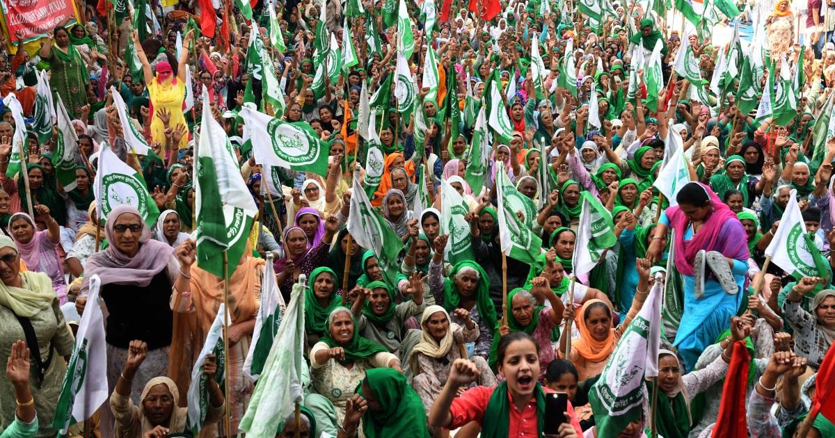 لوتان: ثورة فلاحين في الهند.. عندما يتحد المسلمون والسيخ والهندوس ضد مودي |  هند أخبار | الجزيرة نت