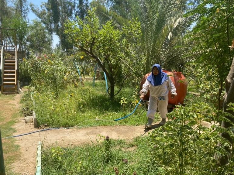 عراقية تنشأ محمية طبيعية لتربية الحيوانات والنباتات النادرة