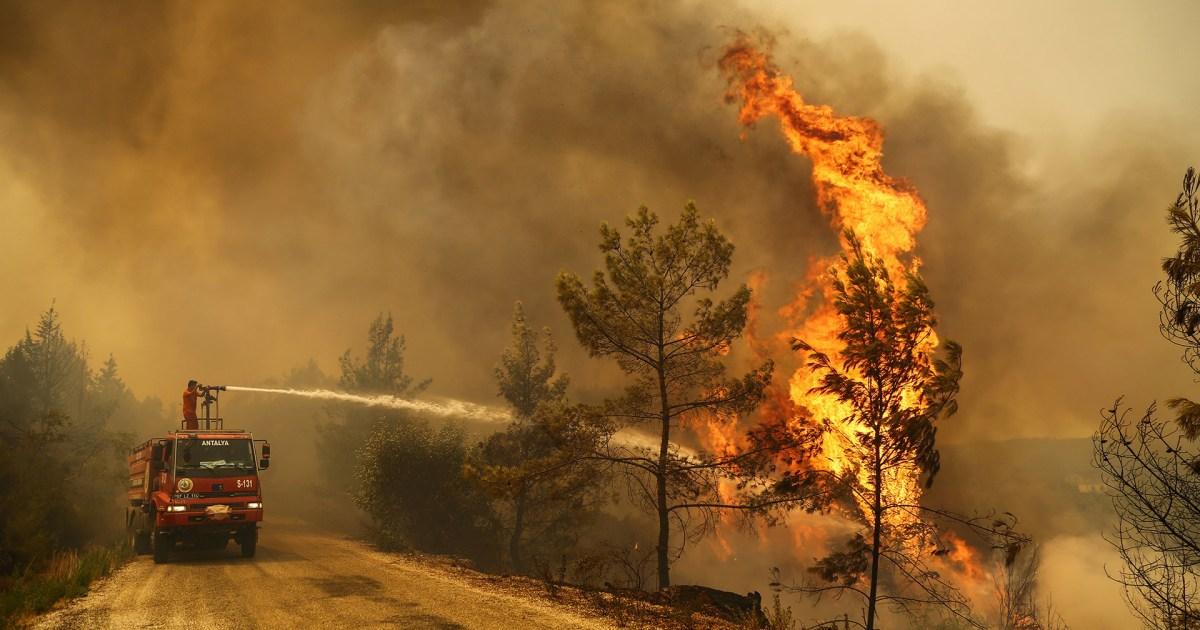 تركيا.. فتح تحقيقات شامة في أسباب حرائق الغابات