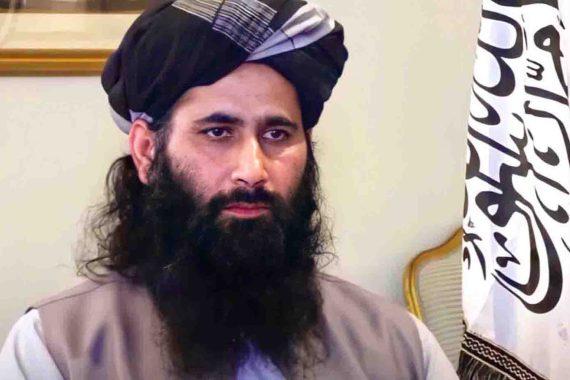 حركة طالبان: تغيرنا بشكل هائل ولم نأت لتصفية الحسابات  تعهدت حركة طالبان، اليوم الثلاثاء، بإحداث تغيير إيجابي ينعكس على حياة نعيم